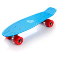 FISHBOARD METEOR neon blue/red/silver
