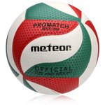 METEOR VOLLEYBALL BALL MAX-300 white/green/red